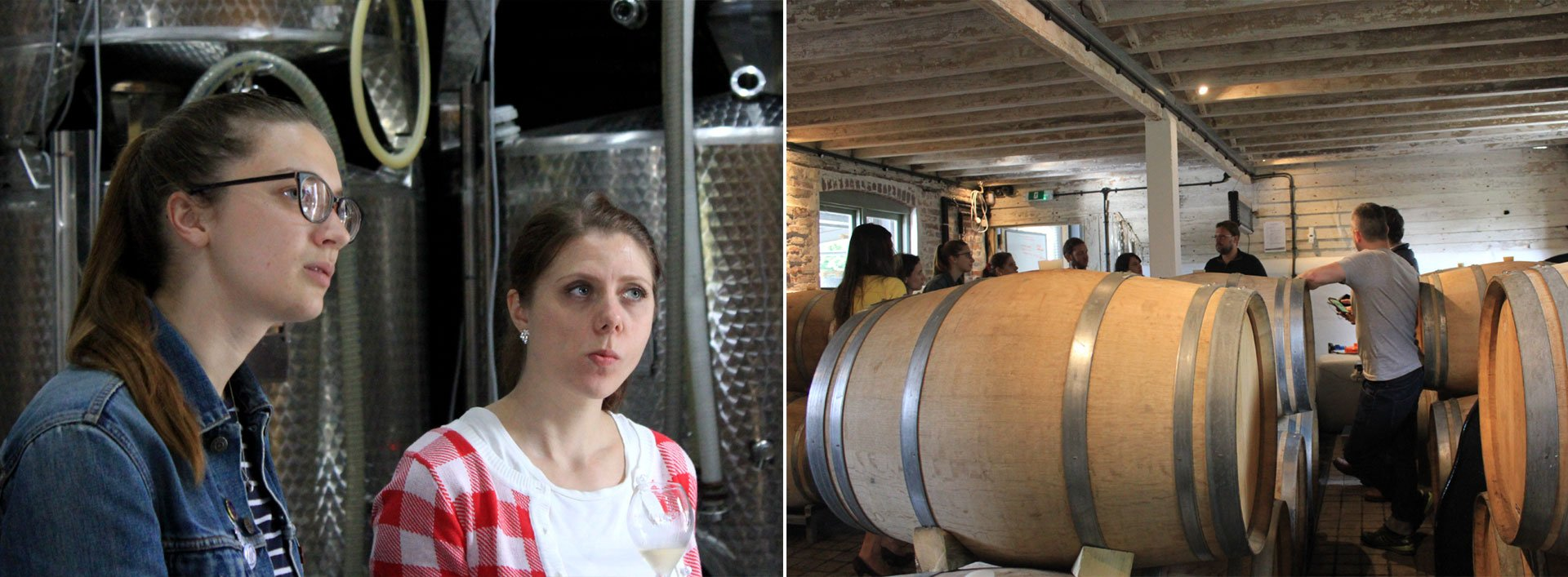 Tasting the 2013 Classic Cuvée in the tank room. Barriques are used to ferment a proportion of the Chardonnay.