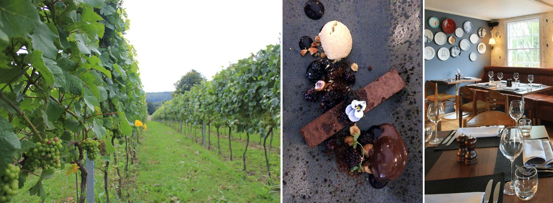 Veraison srating in the Pinot Noir vines. Chocolate brownie with pickled balckberries, yummy! The Curlew
