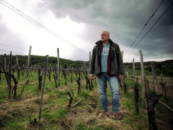 Péter Wetzer - Indigo Wine | Importers of Artisanal Wines Indigo