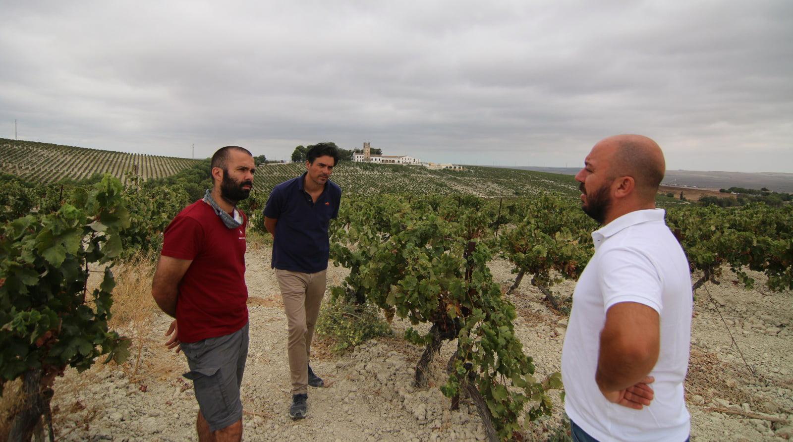 Willy Ramiro Alvaro 2020 harvest_cropped